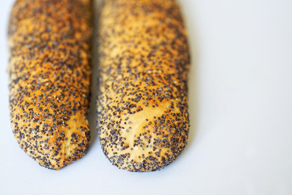 Can Dogs Eat Poppy Seeds?