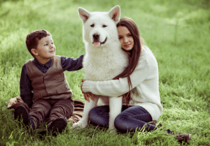 fur-family, therapy dog, therapy animal, children and therapy animals, benefits of a therapy animal, loving and accepting fur-friend