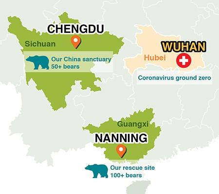 Animals Asian karhujen turvakodit sijaitsevat lähellä Wuhania Kiinassa.