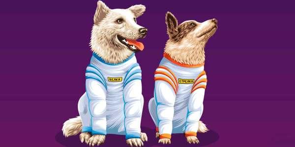 Белка и Стрелка – первые собаки в космосе