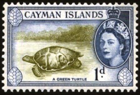 Cayman-1