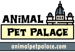 Animal Pet Palace Nigeria