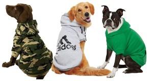puppy-dog-sweater-hoodie