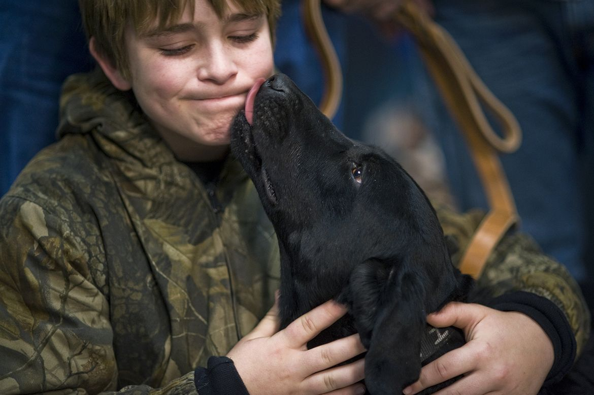 dont-lick-the-dog-making-friends-with-dogs-by-wendy-wahman-compressor