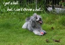 Get a ball.