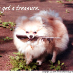 Get a treasure.