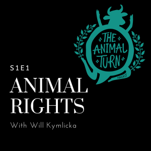 Podcast The Animal Turn