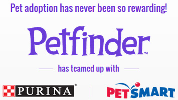 petfinder-rewards-intro