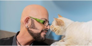 #TeamCatMojo Tips: Benefits of Adopting An Older Cat
