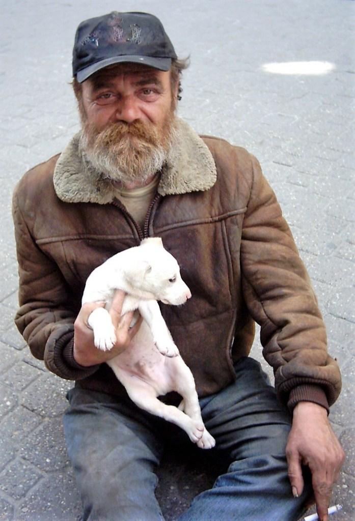 Beggar, homeless person, puppy