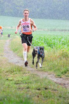 canicross marathon dog running