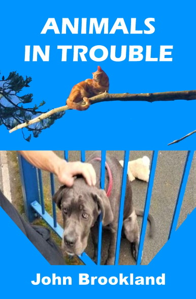 Animals in Trouble book