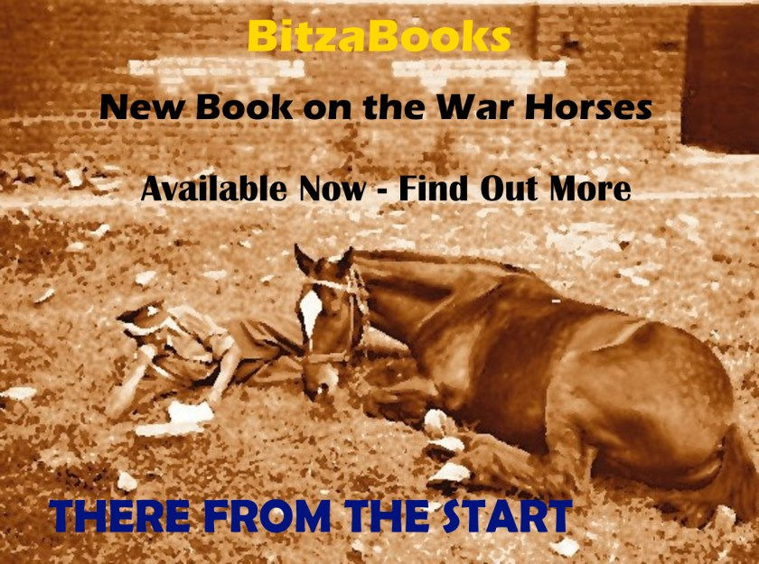 Advert for the book There From The Start by John Brookland about the war horses.