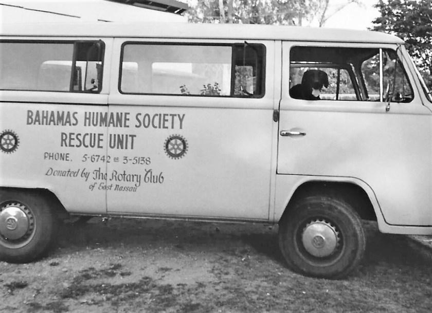 Condor sitting in Bahamas Humane Society rescue unit waiting to go on patrol.