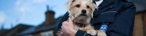 RSPCA officer cradling dog in arms.
