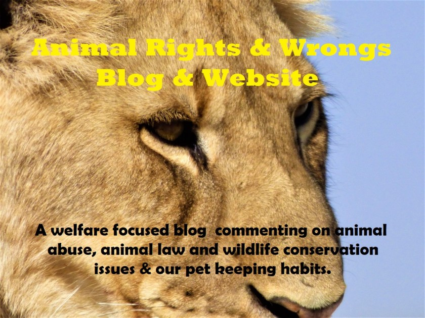 Animal Rights and Wrongs UK