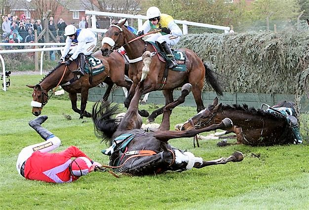 Why 62.5% of the Grand National runners did not finish.