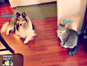 dakota-and-cody-copy