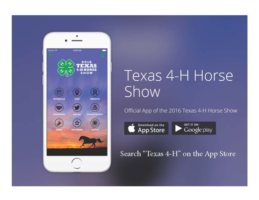 State 4 H Horse Show