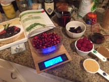 cranberry-sauce-laid-out