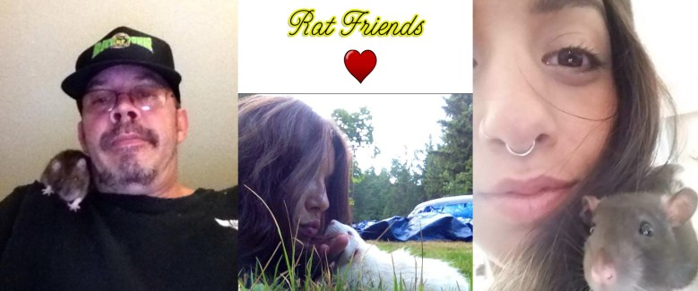 Rat Friends