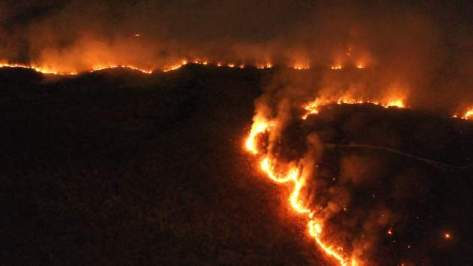 Burning Amazon Rainforest in Tocantins Brazil at night