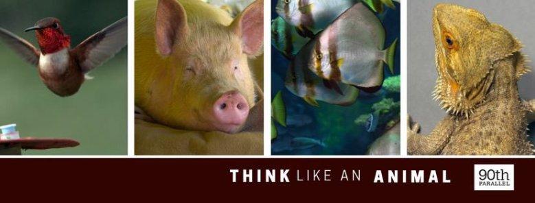 think-like-an-animal