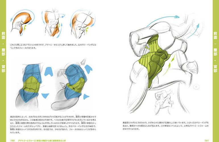 anatomy-force_5