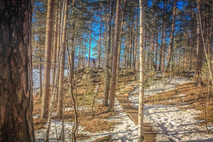 Дорога к каменоломне