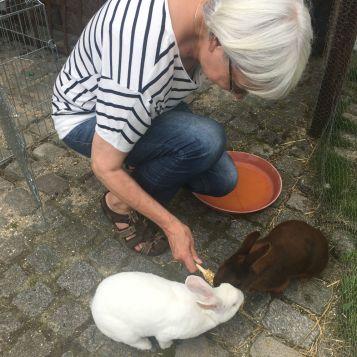 C'est bien beau tout ça, mais qui s'occupe des lapins ? Heureusement Annie est toujours là pour eux <3