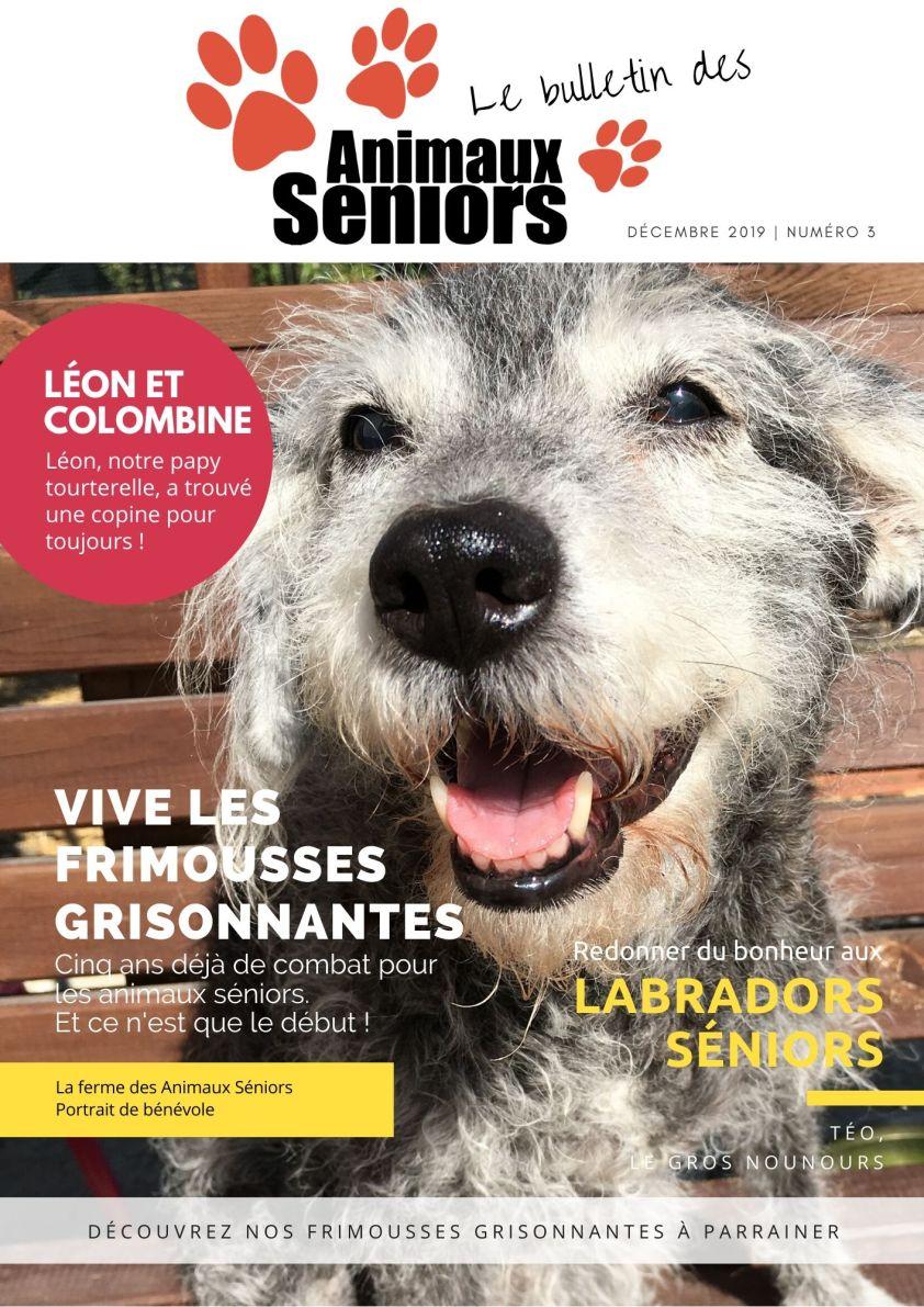 Le-Bulletin-des-Animaux-Séniors-2019
