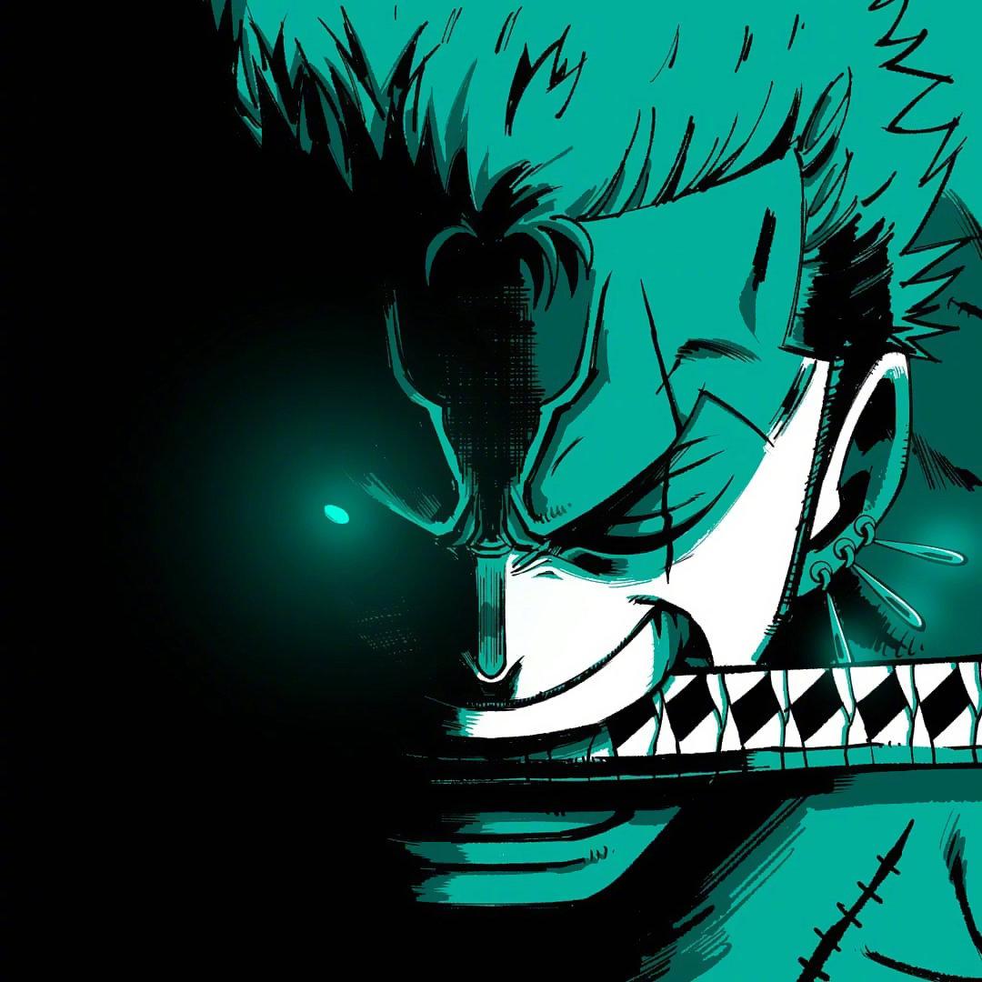海賊王頭像分享,女帝眼神冷冽無情,索隆凶狠似一頭惡狼