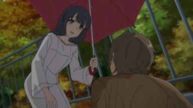青春ブタ野郎はバニーガール先輩の夢を見ない 翔子 咲太
