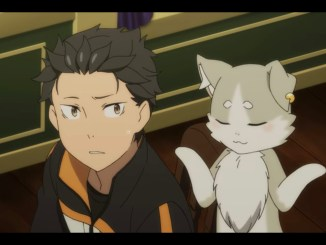 rezero-puck