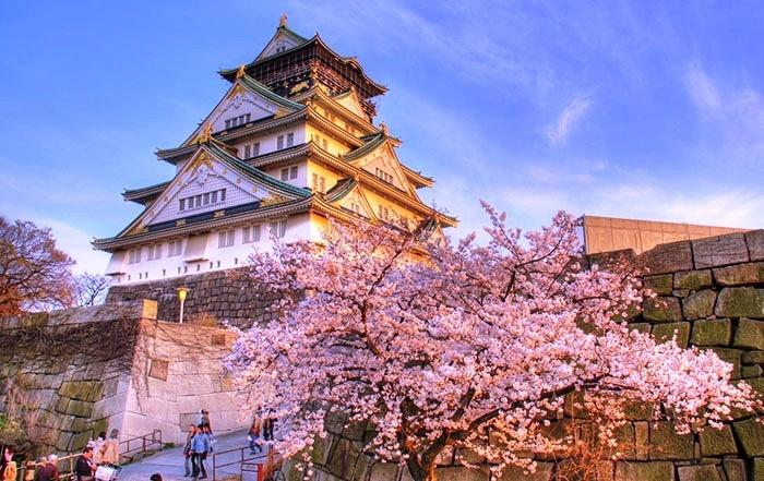 Japan foto: Kirsebærblomster foran Osaka borgen