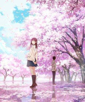 Let Me Eat Your Pancreas Anime Film Teaser