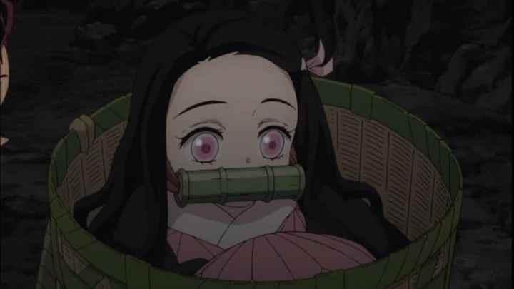 10: Nezuko (Demon Slayer Kimetsu no Yaiba)