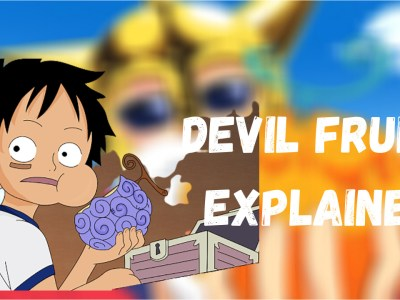 One Piece - Devil Fruit Reincarnation Explained In Detail