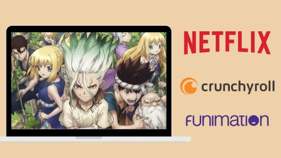 Where to Watch Dr. Stone ?