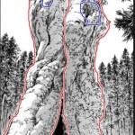 【進撃の巨人】ネタバレ122話考察!ユミル始祖巨人誕生の木の正体を検証!