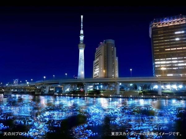 Festival Hotaru 2012(6)