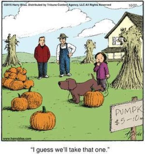 halloween2a