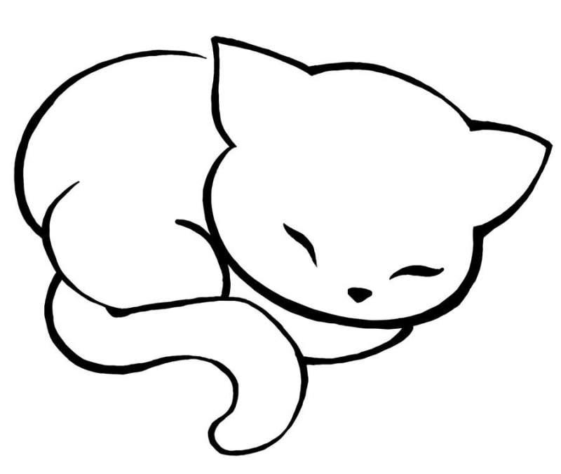 dessin_de_chat (3)