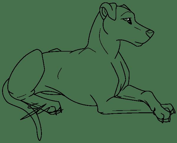 chien6