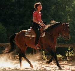 Byron Heir , Etalon Quarter Horse né en 1996