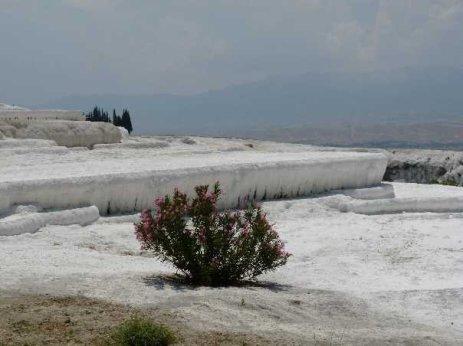 Necropolis Pamukkale Calcium