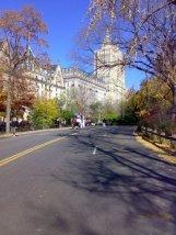 NY Horse Cart Central Park