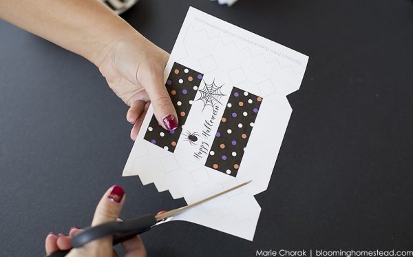 cutting-out-favor-boxes