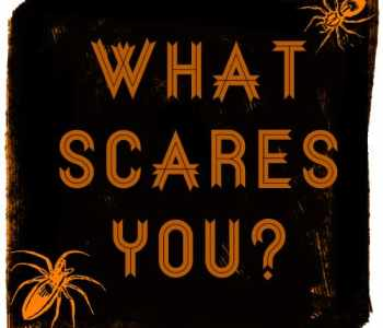 [2020] Ask The Creative Community: What Scares You?