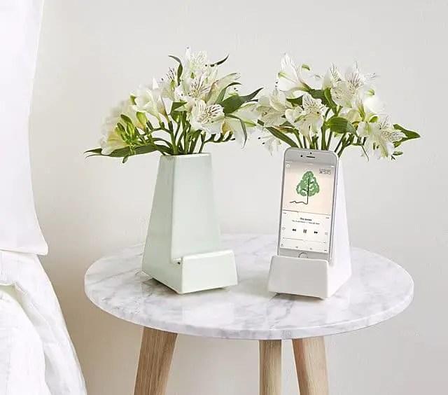 Best Hanukkah Gifts 2019: Bedside Table Flower Vase Phone Holder 2020